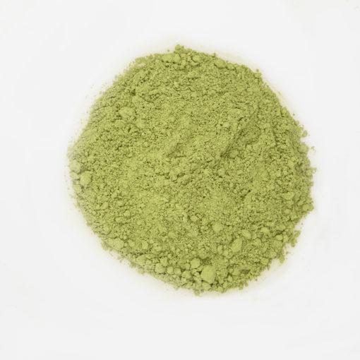 Herbata Matcha chińska susz fotografia